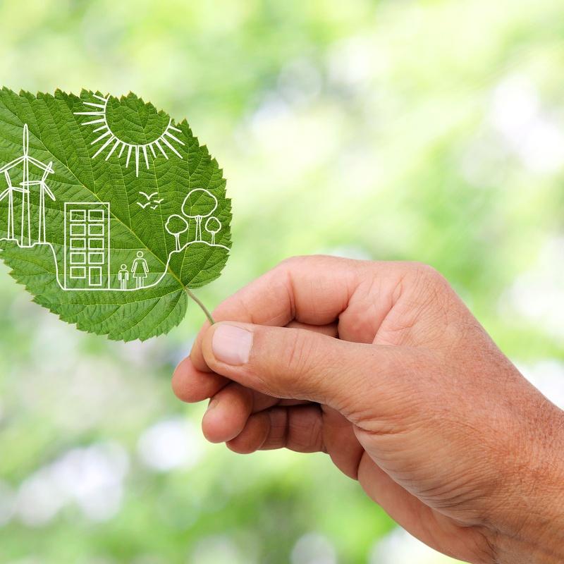 Energías renovables: Servicios de Danagas