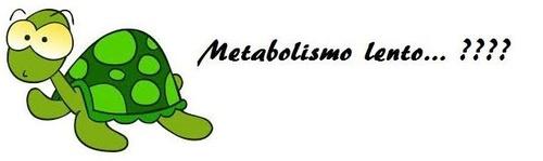 Metabolismo lento Madrid
