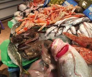 Pescadería en Mataró