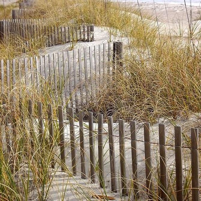 ¿Es buena idea colocar un valla de madera en tu hogar?