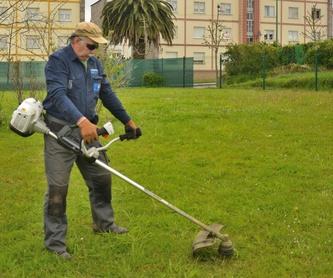 Trabajos con motoazada: Servicios de Jardinería 3,14