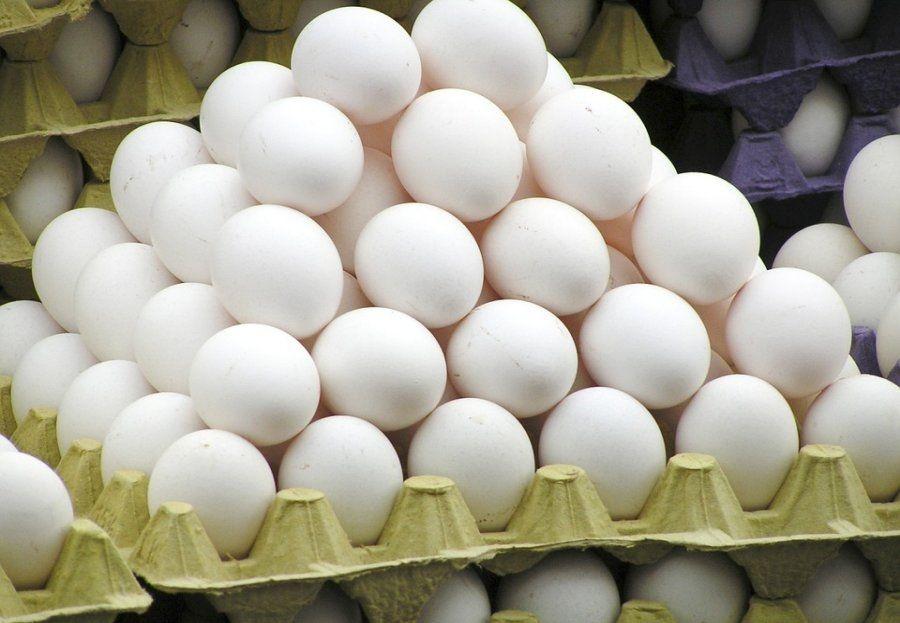 ¿Quieres conocer las propiedades del huevo?