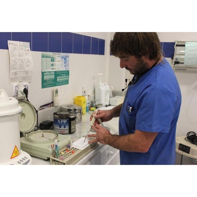 Otros servicios: Servicios de Clínica Veterinaria Fábula