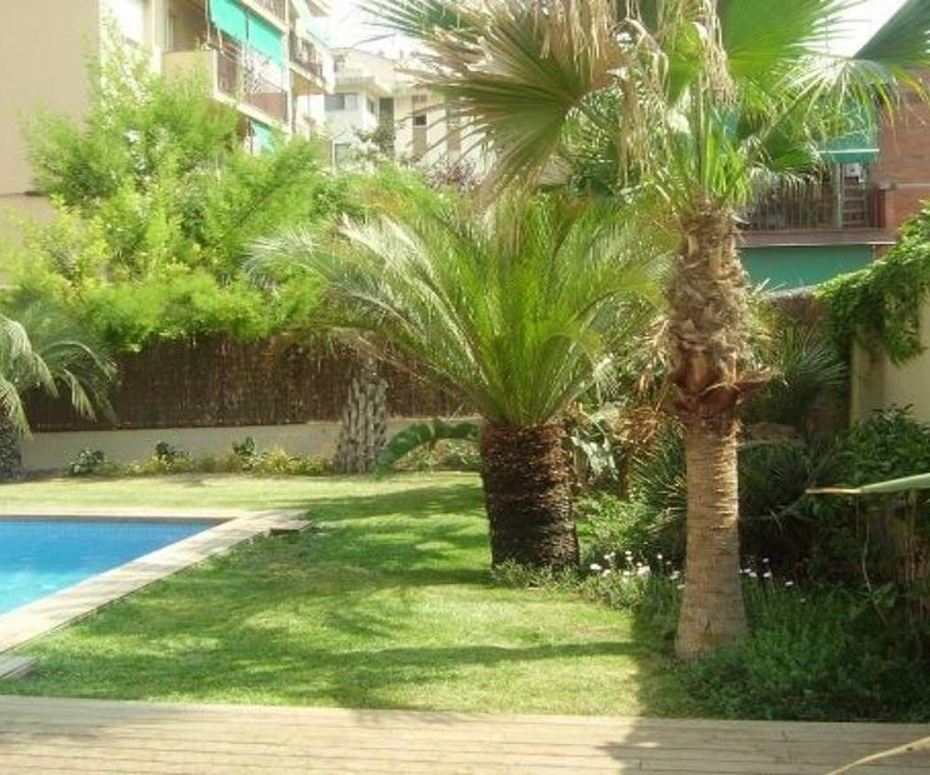 Características del jardín mediterráneo