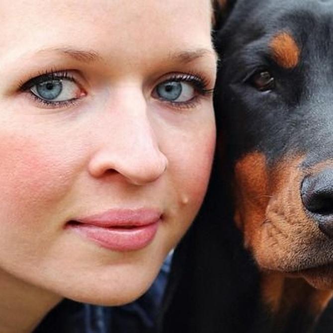 Beneficios en salud de tener mascota