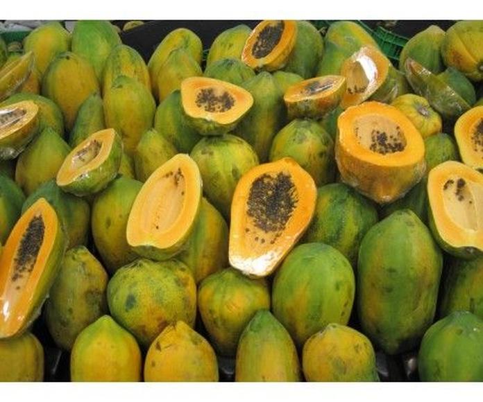 Frutas BIO: Productos de Biorganic Ibiza