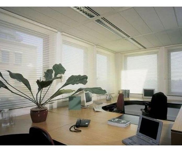 Cortinas y estores para oficinas: Productos y Servicios de Officedeco