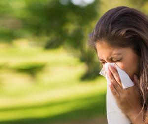 Alergología
