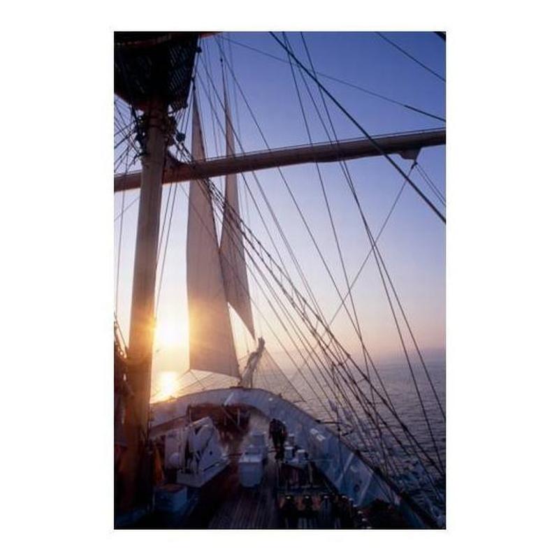 Renovación licencia de patrón o capitán: Servicios de Medipsico, S.L.