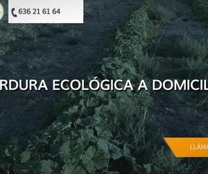 Comprar verdura ecológica en Majadahonda: La Huerta de Leo