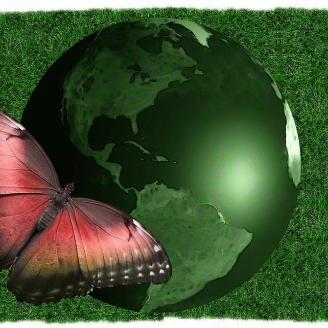 La labor más ecológica de nuestro trabajo