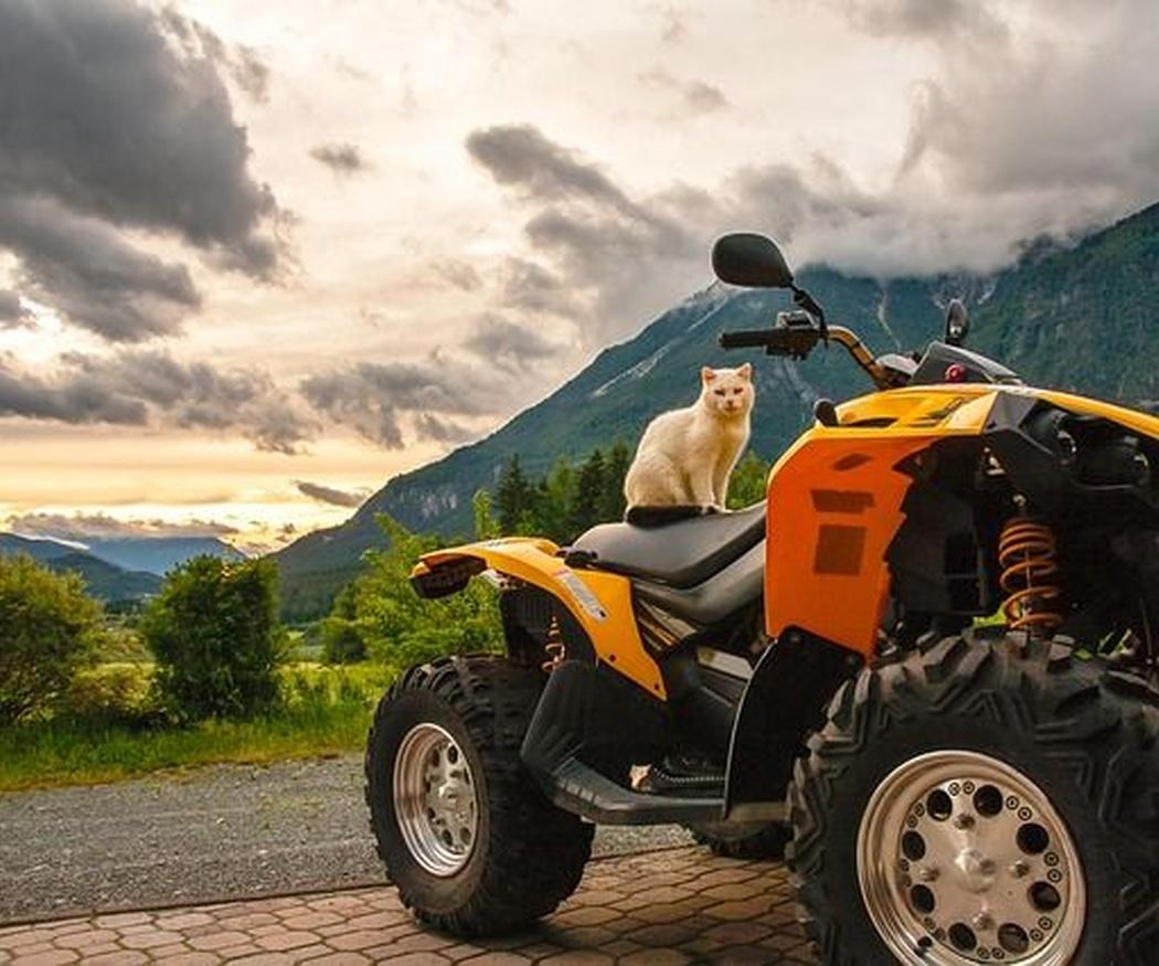 Un buena excursión a lomos de un quad