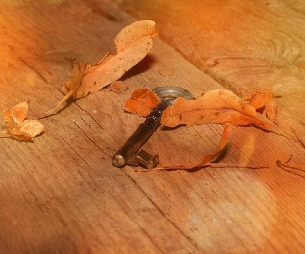 Consejos para limpiar los suelos de madera