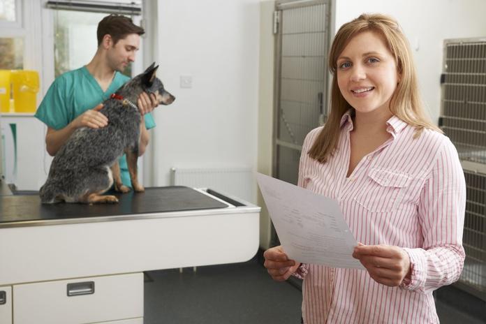 Oftalmología veterinaria: Servicios de El Arca Clínica Veterinaria