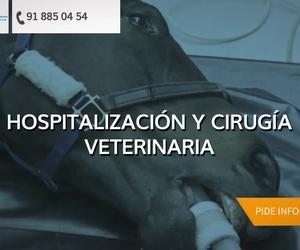 Veterinarios en Villalbilla | Clínica Veterinaria Villalbilla