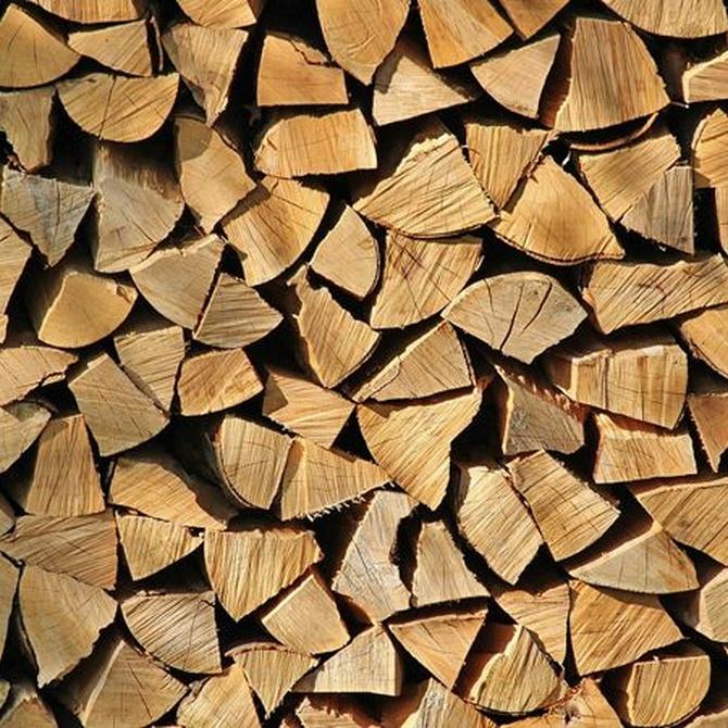¿Cuál es la mejor madera para su uso como leña?