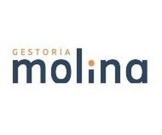 Asesoría de Empresas: Servicios de Gestoría Molina