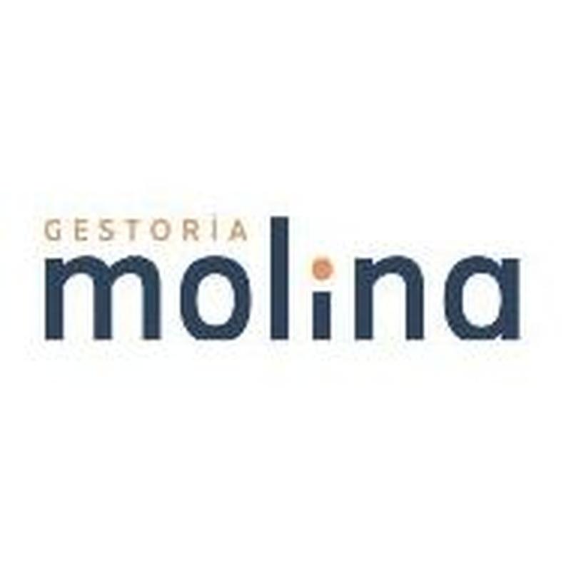 Tramitación de herencias: Servicios de Gestoría Molina