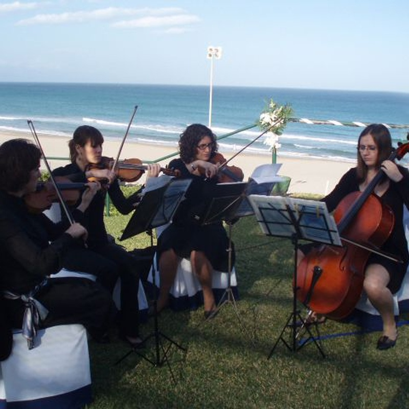 Cuarteto de cuerda: Servicios de Mar Espectáculos