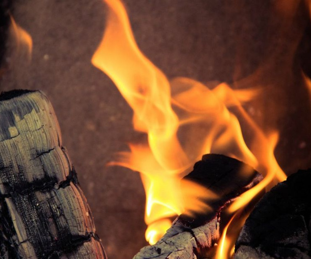 Las características de la madera (alguna te va a sorprender)