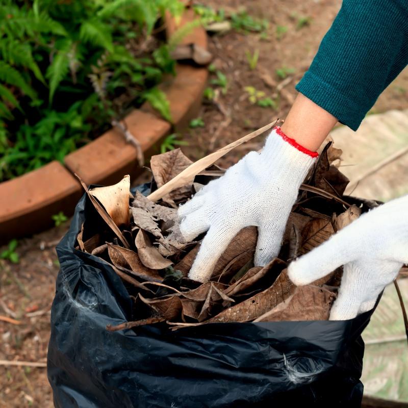 Recogida de basura en domicilio: Limpiezas de Eco Limpio