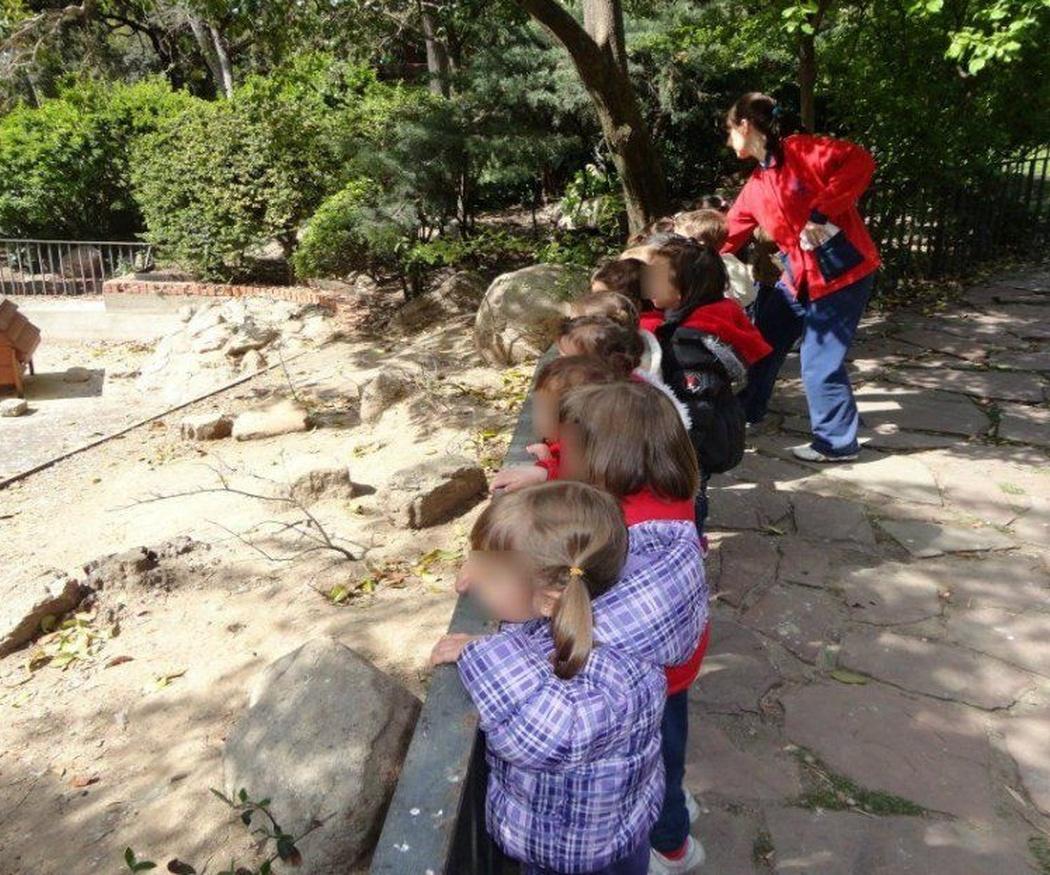 Las actividades de naturaleza en la escuela infantil