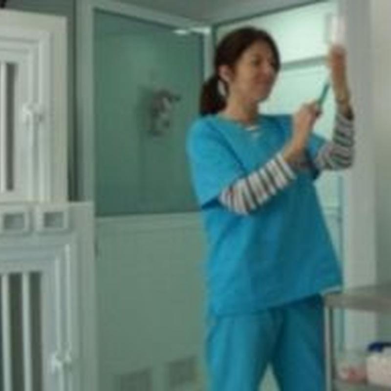 Hospitalización: Productos y servicios de Veterinario El Puertito