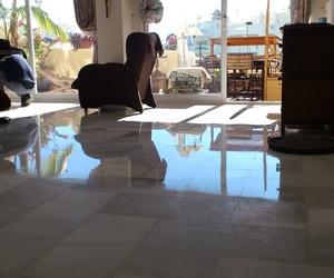Tratamientos para todo tipo de superficies en Málaga
