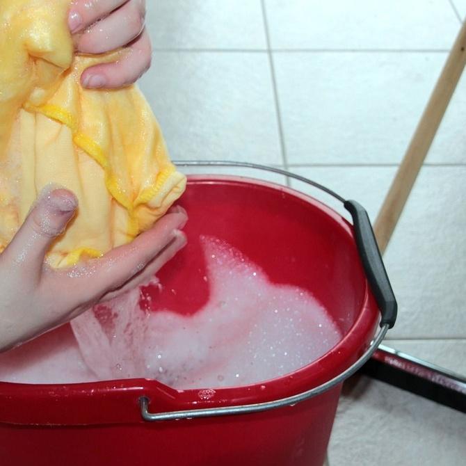 La limpieza y desinfección de trasteros, un tema importante