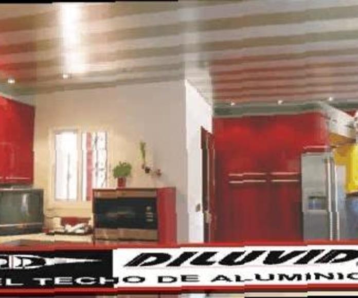PUERTAS DE REGISTRO, PARA TECHOS