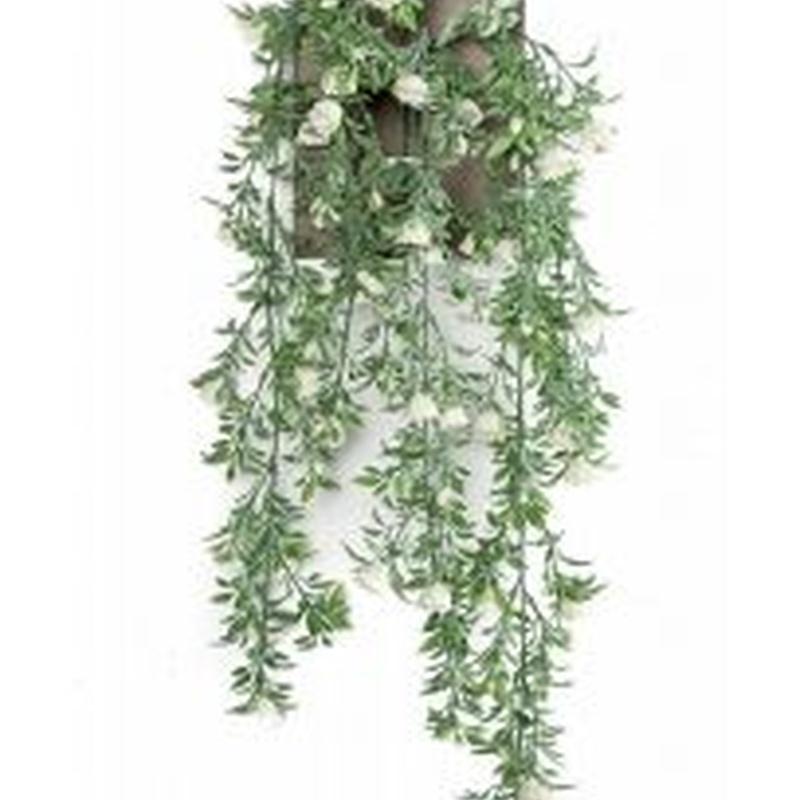 Planta colgante 419276: ¿Qué hacemos? de Ches Pa, S.L.