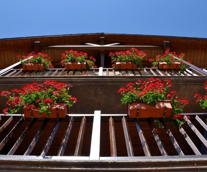 Tarifas apartamentos: Productos y Servicios   de Restaurante La Cocinilla - Apartamentos Casa Montse