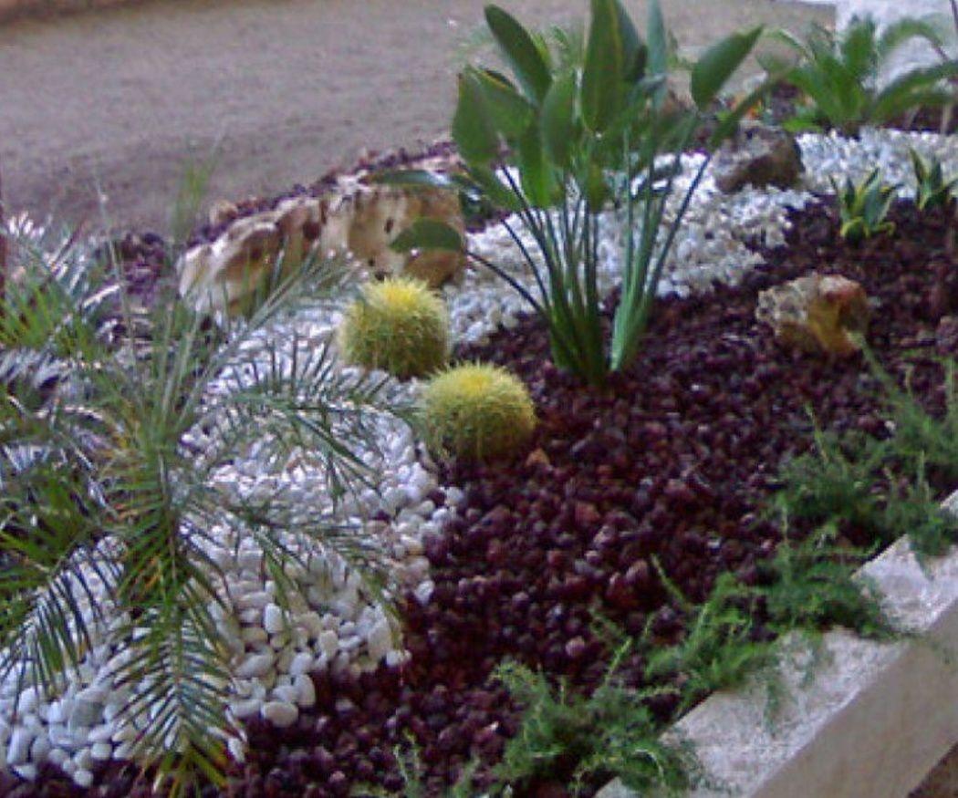 La importancia del diseño en un jardín