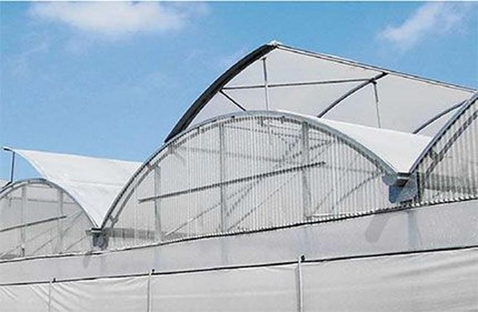 Pantallas térmicas: Servicios de Global Invernaderos Greenhouse