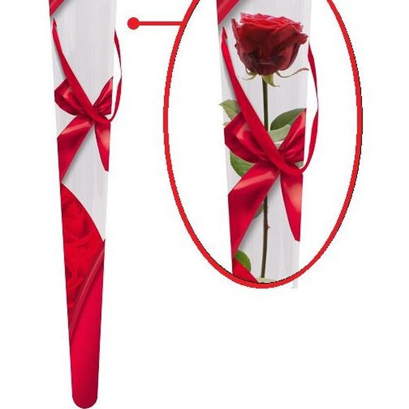 "CUCURUCHO DE ACETATO MODELO ""Ribbon & Roses"" (6x2x52,5cm)/ ROJO REF: M40197 PRECIO: 1€/UD (SE VENDEN EN PQTES X10 UNIDADES)"