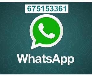 Whats App Ferretería Mendoza