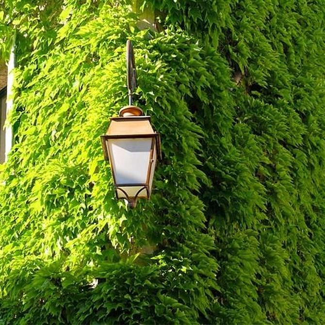 Sostenibilidad en edificación y fachadas verdes