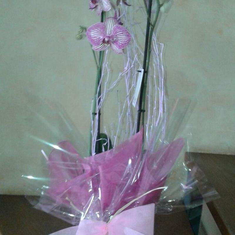 Ramos de flores: Arreglos Florales de Flores Cid Arte Floral