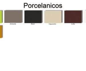 Porcelanicos