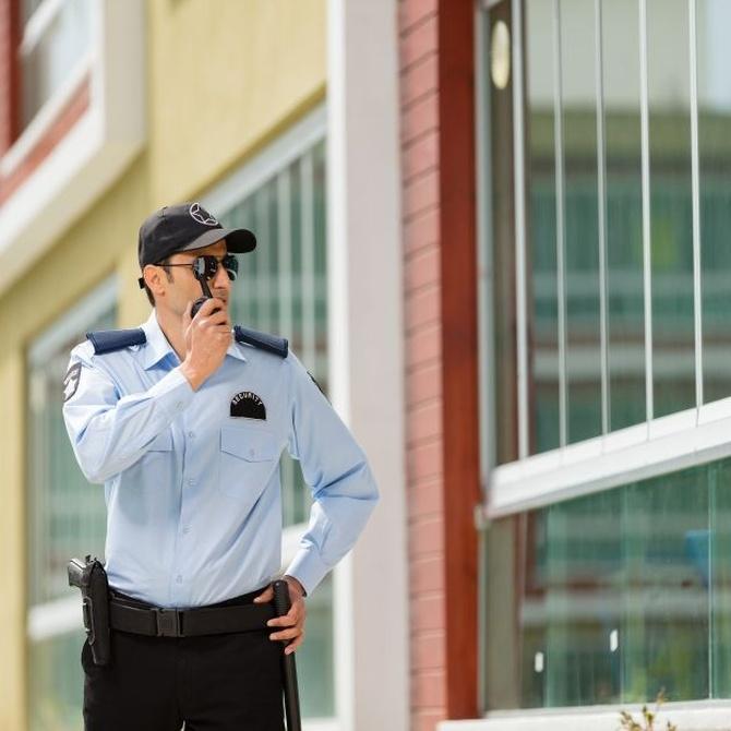 El personal de la Seguridad Privada (II)
