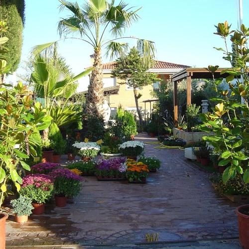 Nuestro centro de jardineria