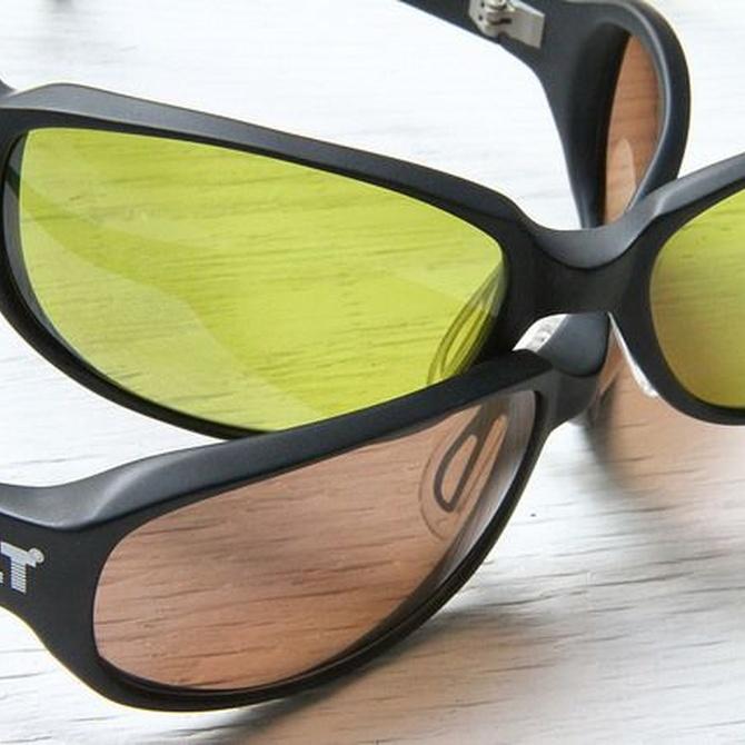 ¿Conoces las lentes polarizadas?