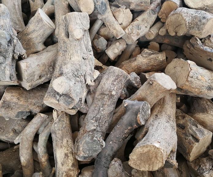 Leña de Olivo,a granel y en sacas.: NUESTROS PRODUCTOS de Mofusa