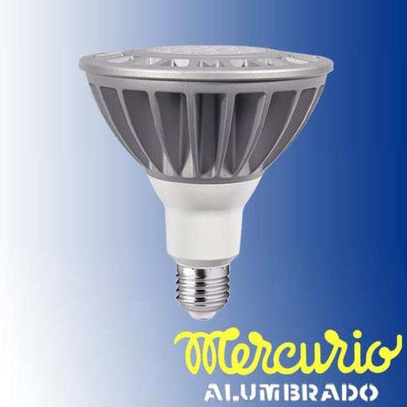 Par 38 LED Asturias