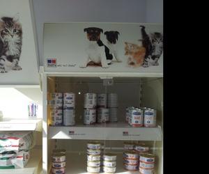alimentación en clínica veterinaria Collado Villalba