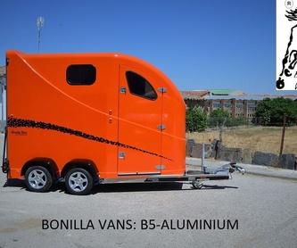 Diagonal 3: Modelos de Bonilla Vans