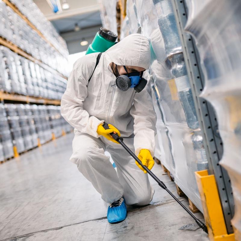 Tratamiento, desinfección y control de plagas: Servicios recogida de aceite de Reciclados Deter-Oil