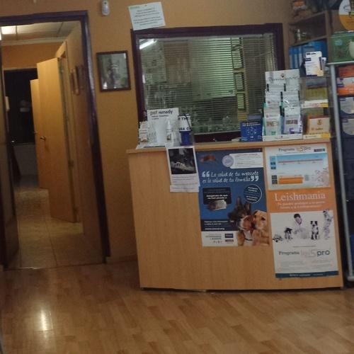 Veterinario 24 horas en Calpe | Centro Veterinario Ifach