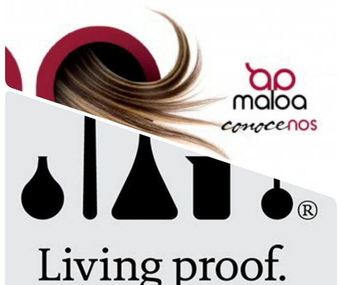 Living Proof con Maloa
