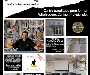 cursos de adiestramiento canino en Cartagena